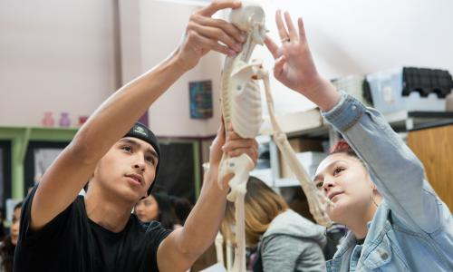 High school students looking at skeleton model in classroom