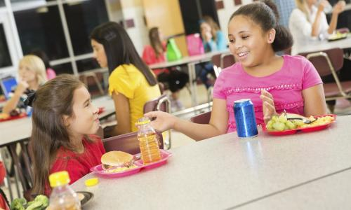 Two girls talking at a lunch table.