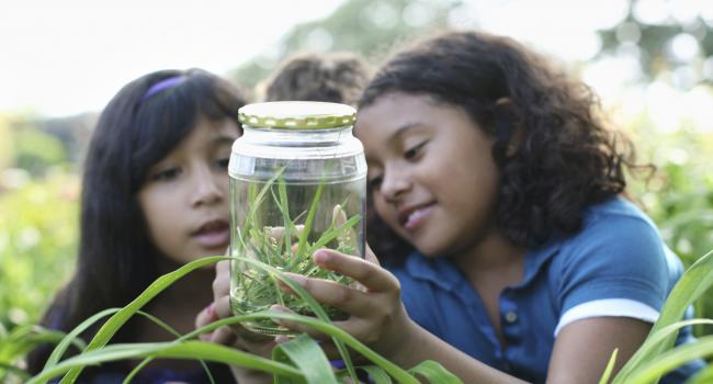 two children in the grass looking at something in a glass jar