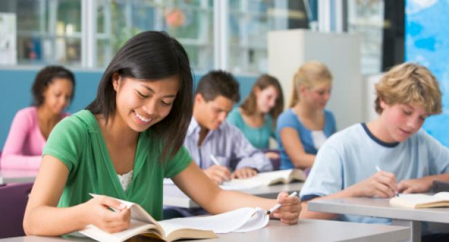 "the literature student as self invested learner Motivation: a literature review   supporting student learning more recently, the partnership for 21st century skills has identified  he defines as ""voluntary uses of high-level self-regulated learning strategies, such as paying attention, connection, planning, and monitoring"" (p 413."